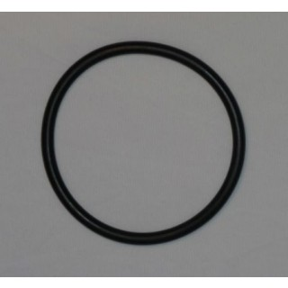 "O-Ring - 10"" Pre-Filter/Post-Filter Housing w/ 1"" FNPT"