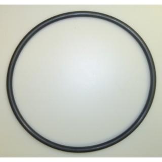 Lid O-Ring - Inline Chlorinator