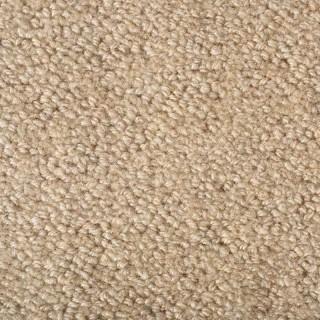 Earth Weave Carpeting Rainier Snowfield