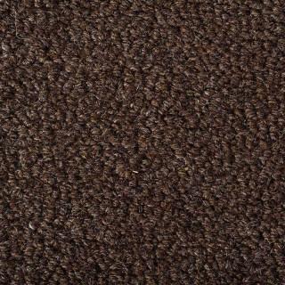 Earth Weave Carpeting Rainier Ursus