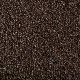 Earth Weave Carpet: Dolomite Ursus