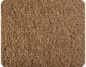 Earth Weave Rainier Tussock Rug 6' x 9'